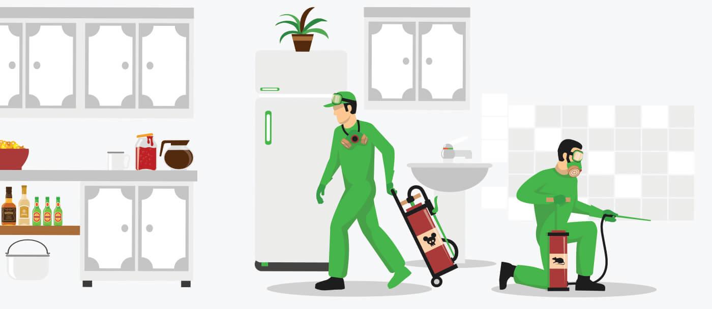 General Pest Control Stress Free Dubai