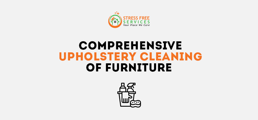 Comprehensive Upholstery Cleaning Of Furniture